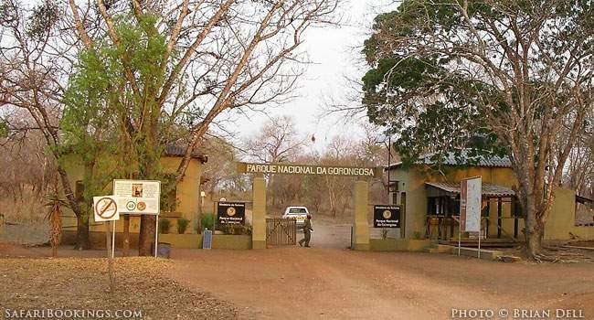 Mozambique: Safari Destination?