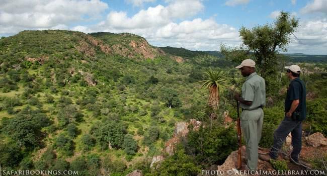 Walking Safaris in Kruger National Park