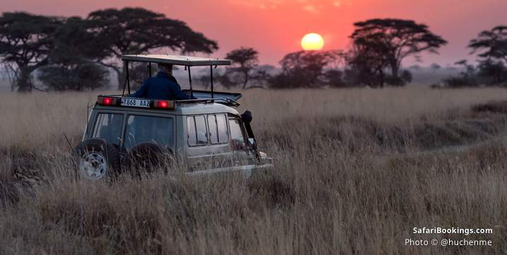 10 insights what to expect on safari - cold near freezing game drives