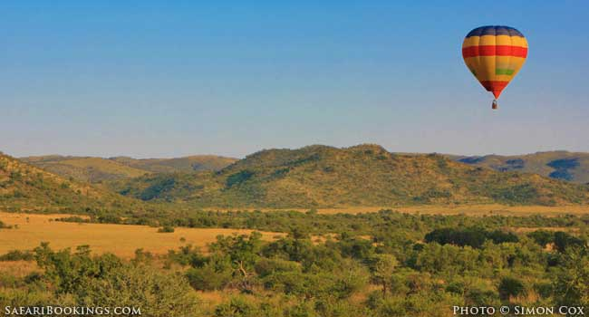 5 Best Family-friendly Safaris in South Africa