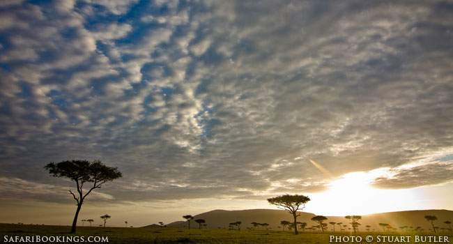 Walking With The Masaai - Landscape