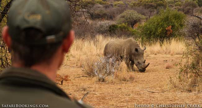 Wildlife Encounters: The Good, the Bad and the Ugly