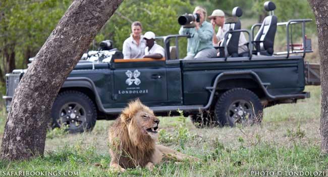 All-inclusive Safari: Getting it All