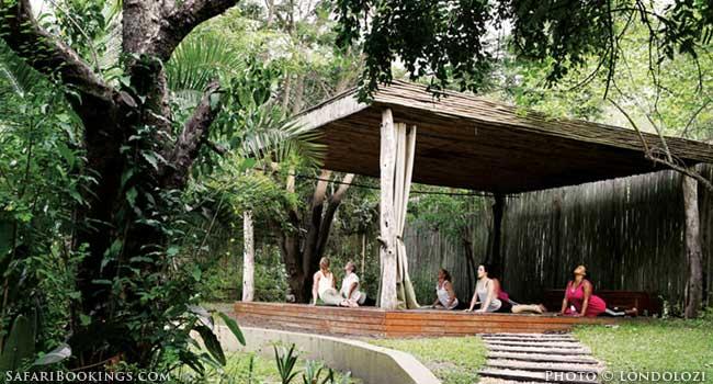 All Inclusive Safaris Yoga Londolozi
