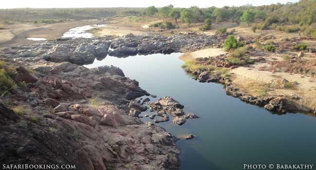 Great Limpopo Transfrontier Park's Hidden Gem: Gonarezhou