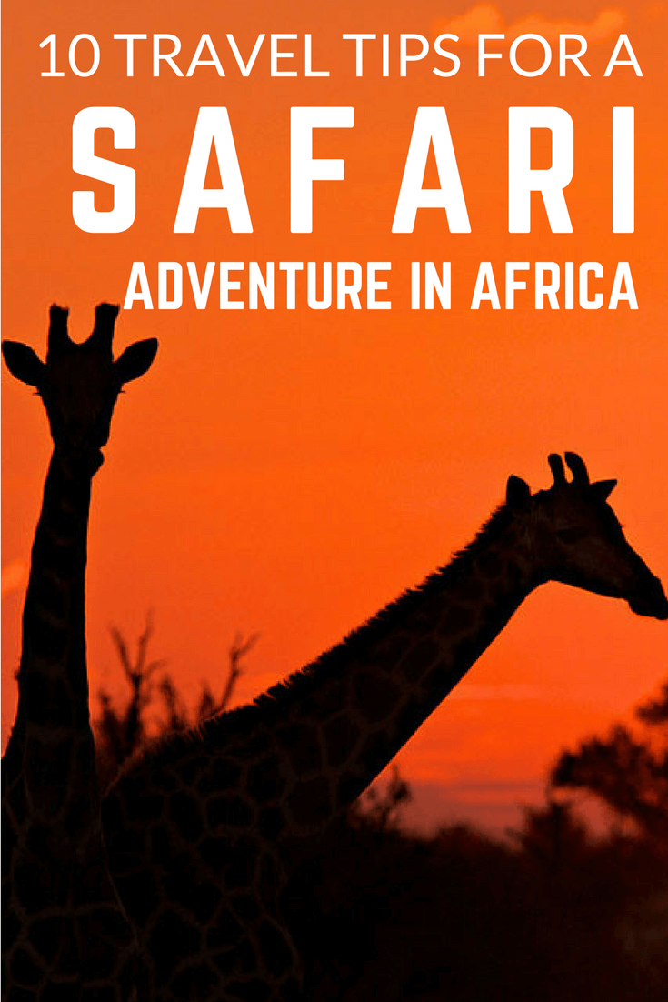 Here are a few general travel tips that you might want to keep in mind when going on safari. Check them out at https://www.safaribookings.com/blog/266