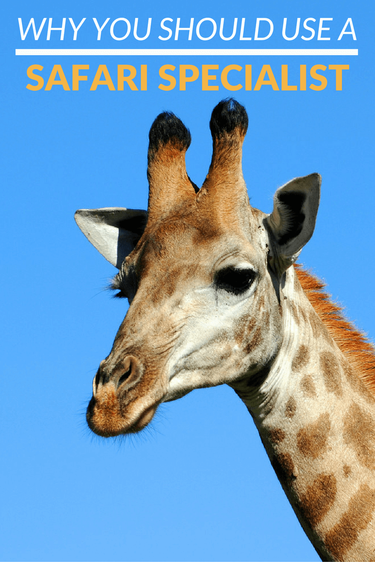 Booking a safari to Africa online is not as straightforward as other travel arrangements. Here are some reasons why you should really book through an Africa Travel Specialist.