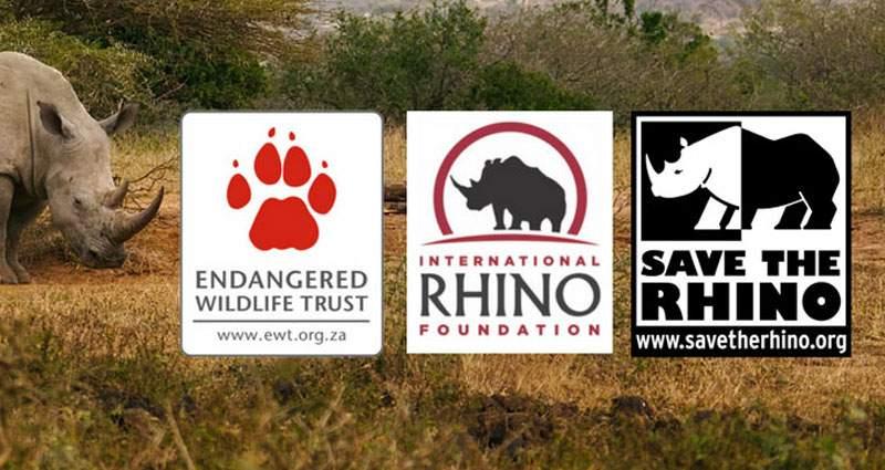 SafariBookings.com Rhino Donation Campaign Contestants