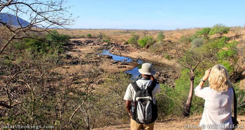 The Ruaha River as seen on a walking safari in the dry season.