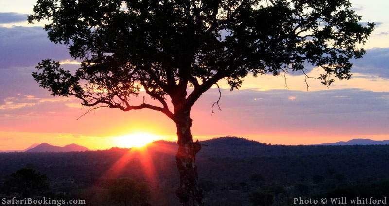 Sunset at Ruaha National Park