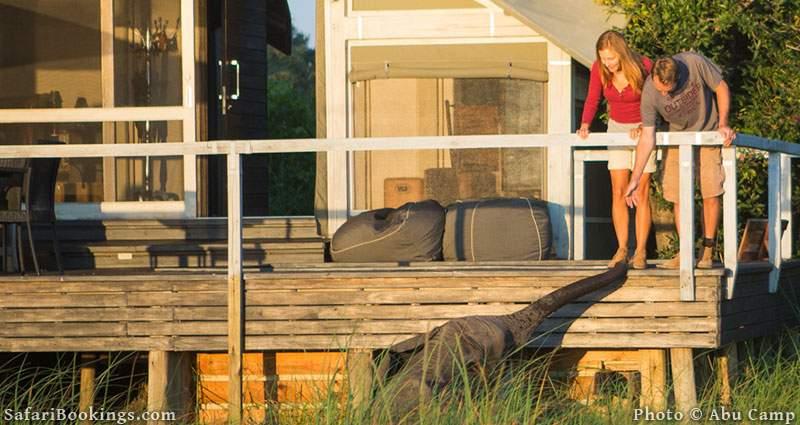 Abu Camp is one of the Best Botswana Safari Camps