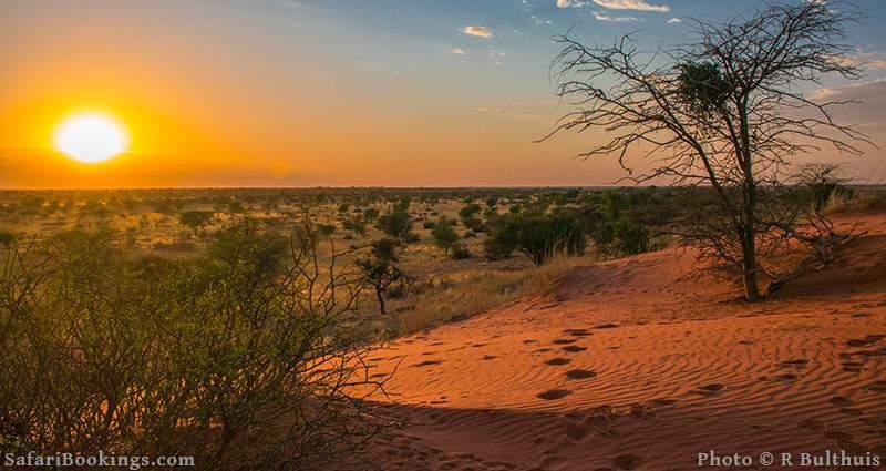 Sunrise in the desert, Kalahari, Namibia