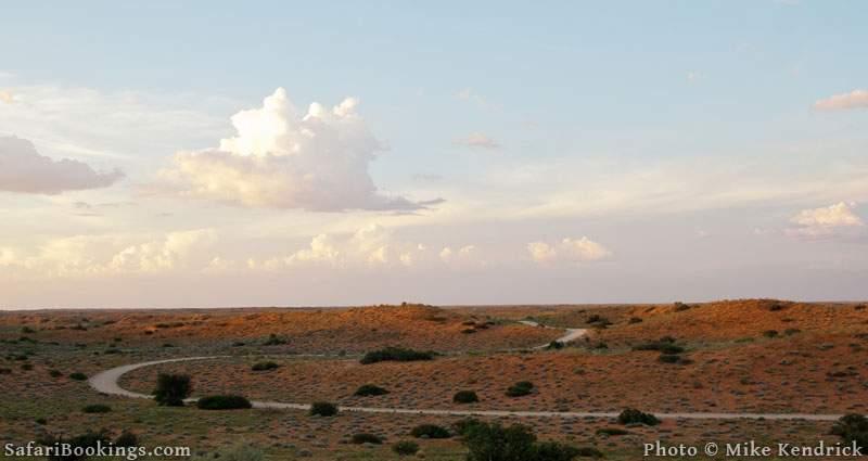 10 Interesting Kalahari Desert Facts
