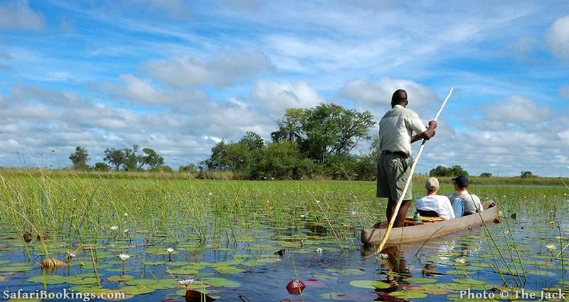 Safe place to visit in Africa: Okavango Delta