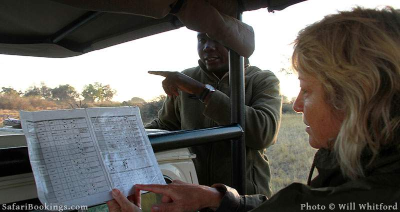 How to Help Monitor Rhino's In Moremi Game Reserve in Botswana