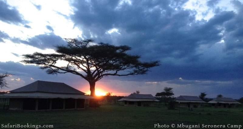Mbugani Seronera Camp