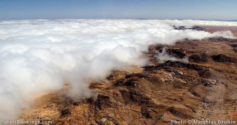 Nevelbank in de Namib desert
