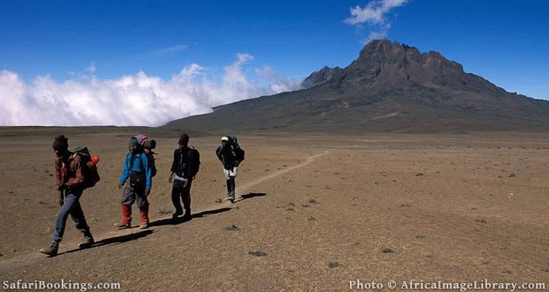 Porters carrying luggage on the climb of Mount Kilimanjaro, Tanzania