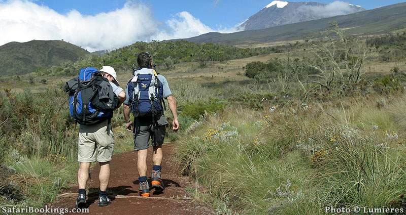 Hiking on Mount Kilimanjaro, Tanzania