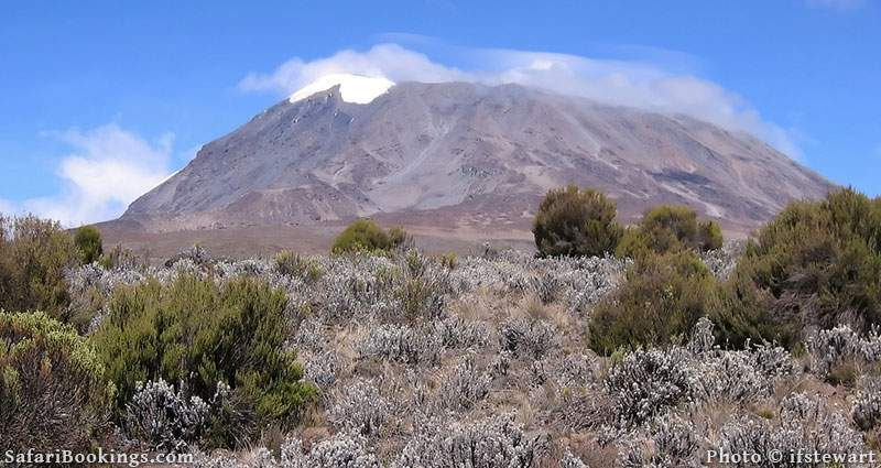 View from the Marangu Route, Mount Kilimanjaro, Tanzania