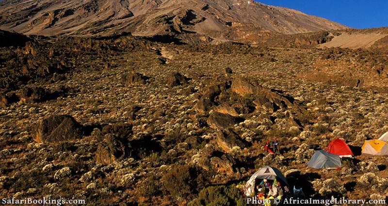 Camping on the North face. Mount Kilimanjaro, Tanzania