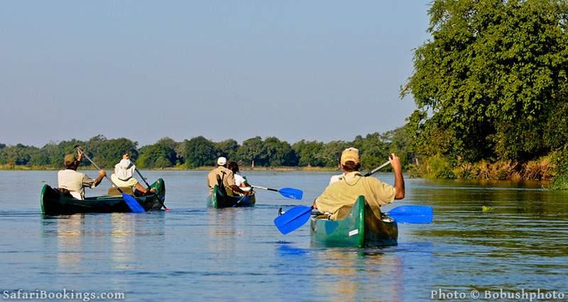 A canoe trip down the Zambezi River at Mana Pools National Park, Zimbabwe