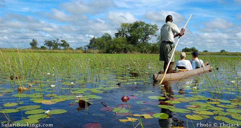 Mokoro trip over the Okavango delta, Botswana