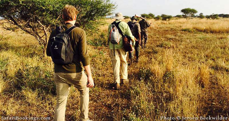 Walking Safari at Kruger National Park, South Africa