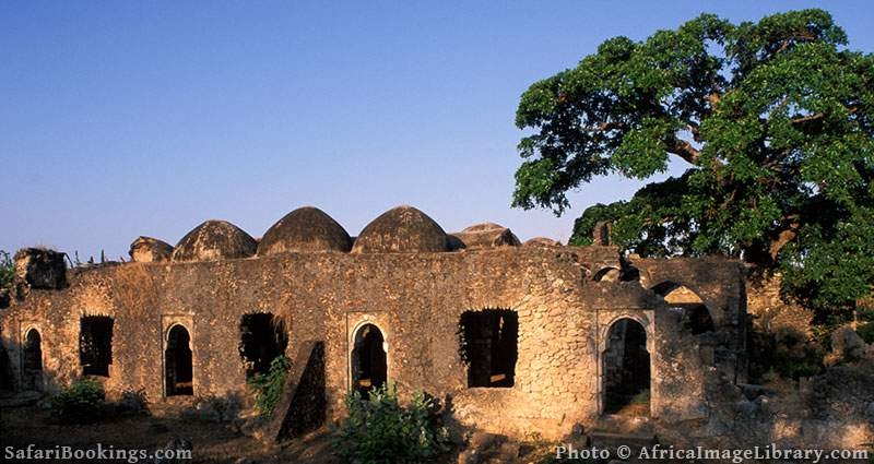 Kilwa ruins, Great mosque interior, built in the 14th century