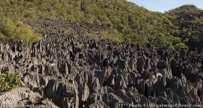 Ankarana massif, tsingy and deciduous forest at Ankarana Special Reserve, Madagascar