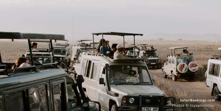 What to bring on a safari - Binoculars