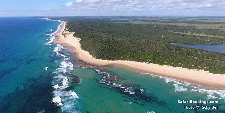 Aerial view of the beach and bush