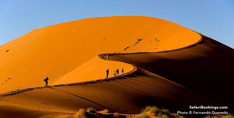 Tourists climbing a dune