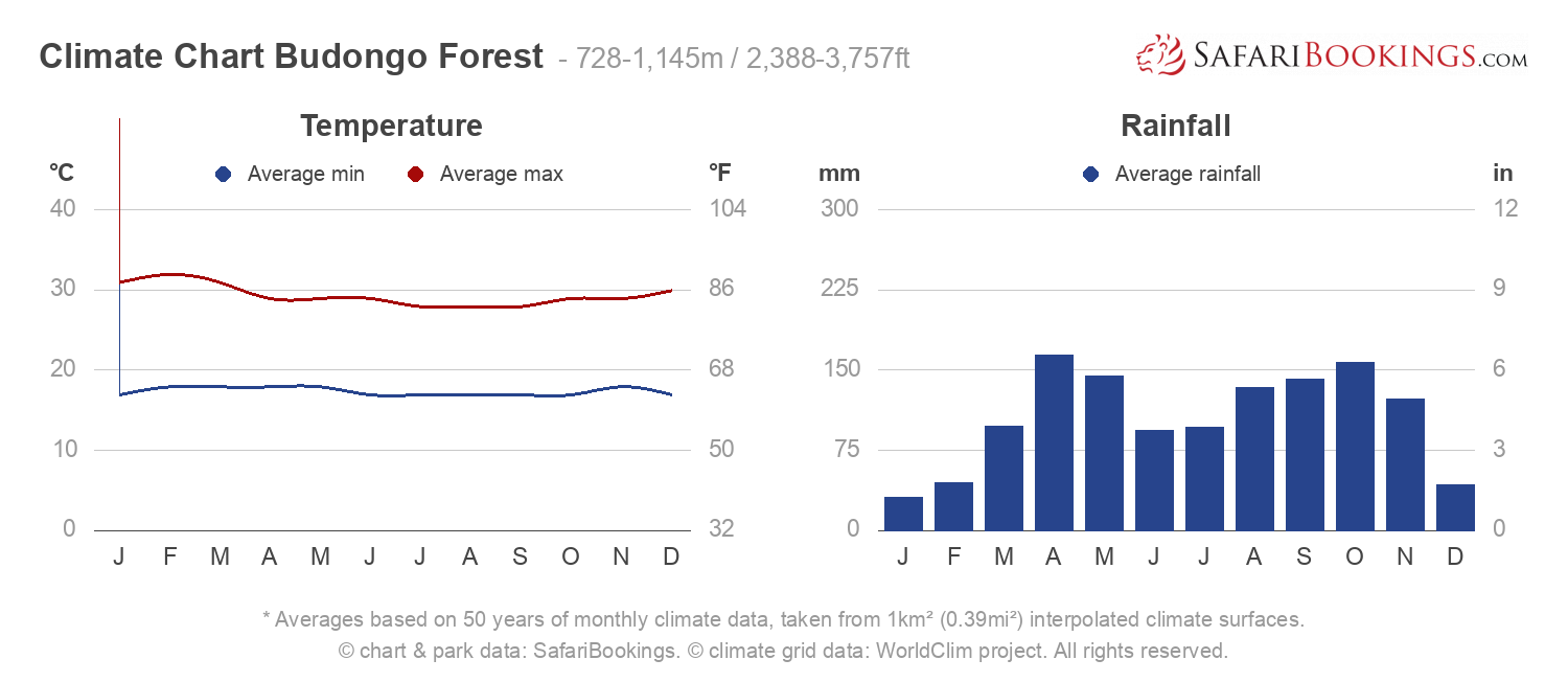 Climate Chart Budongo Forest