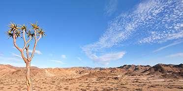 |Ai-|Ais Richtersveld Transfrontier Park
