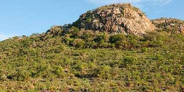 Pilanesberg Game Reserve