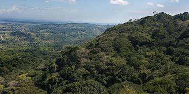 Shimba Hills National Reserve