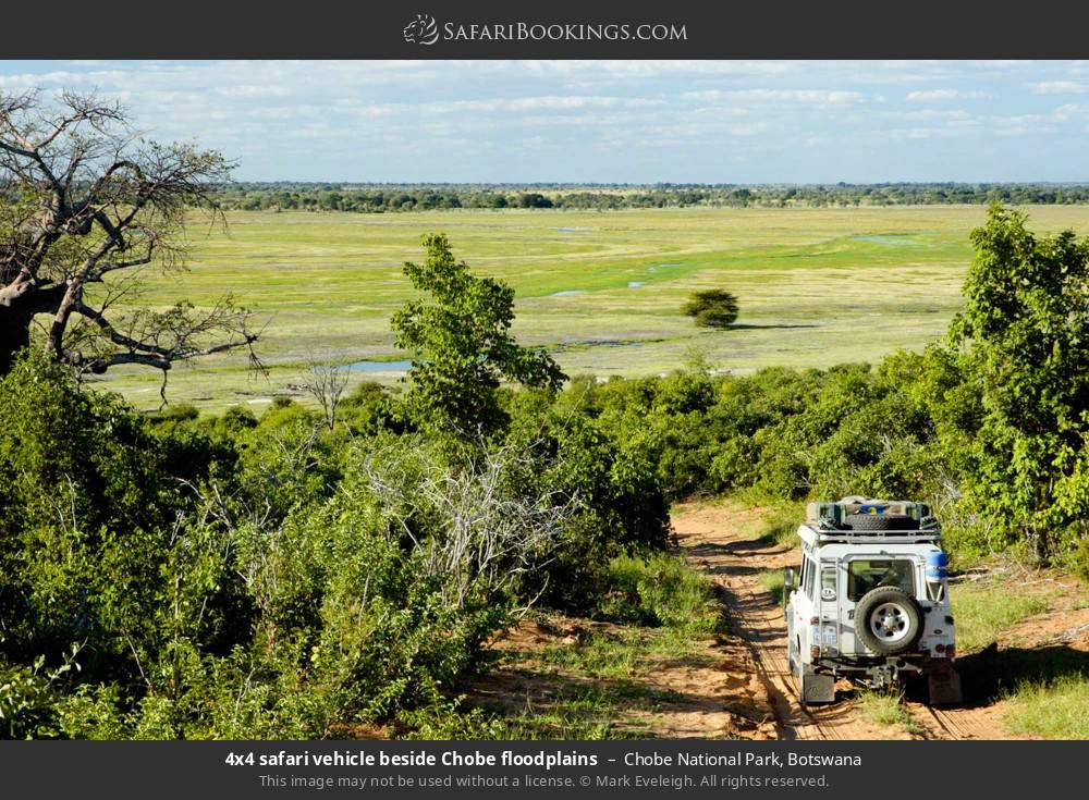 4x4 safari beside Chobe floodplains in Chobe National Park, Botswana
