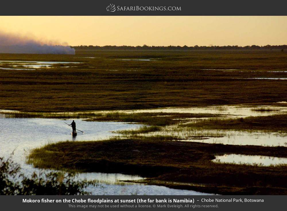 Mokoro fisherman on the Chobe floodplains at sunset, the far bank is Namibia in Chobe National Park, Botswana