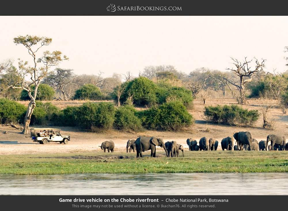 Game drive vehicle on the Chobe riverfront in Chobe National Park, Botswana