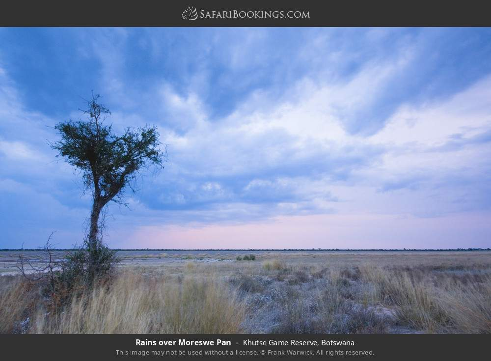 Rains over Moreswe Pan in Khutse Game Reserve, Botswana
