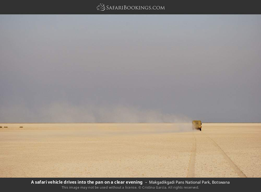 A safari vehicle drives into the pan on a clear evening in Makgadikgadi Pans National Park, Botswana