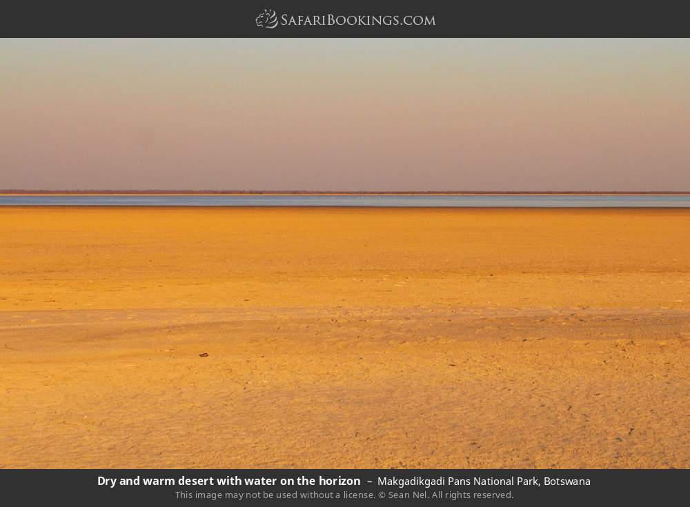 Dry and warm desert with water on the horizon in Makgadikgadi Pans National Park, Botswana