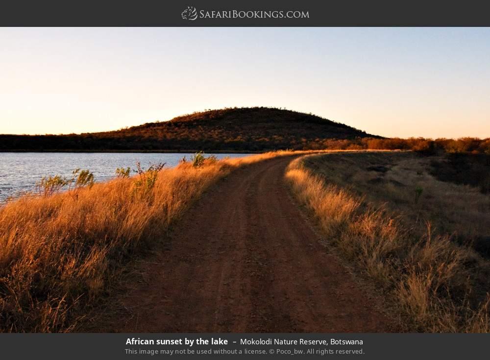 African sunset by the lake in Mokolodi Nature Reserve, Botswana