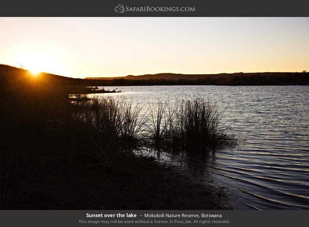Sunset over the lake in Mokolodi Nature Reserve, Botswana