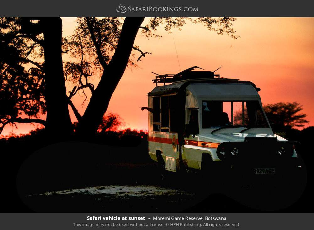 Safari vehicle at sunset in Moremi Game Reserve, Botswana