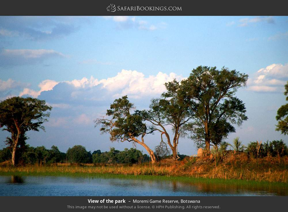View of the park in Moremi Game Reserve, Botswana