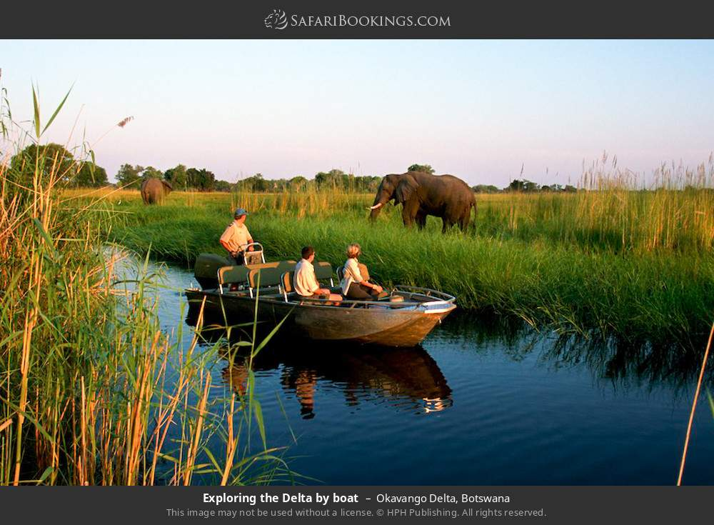 Exploring the delta by boat in Okavango Delta, Botswana