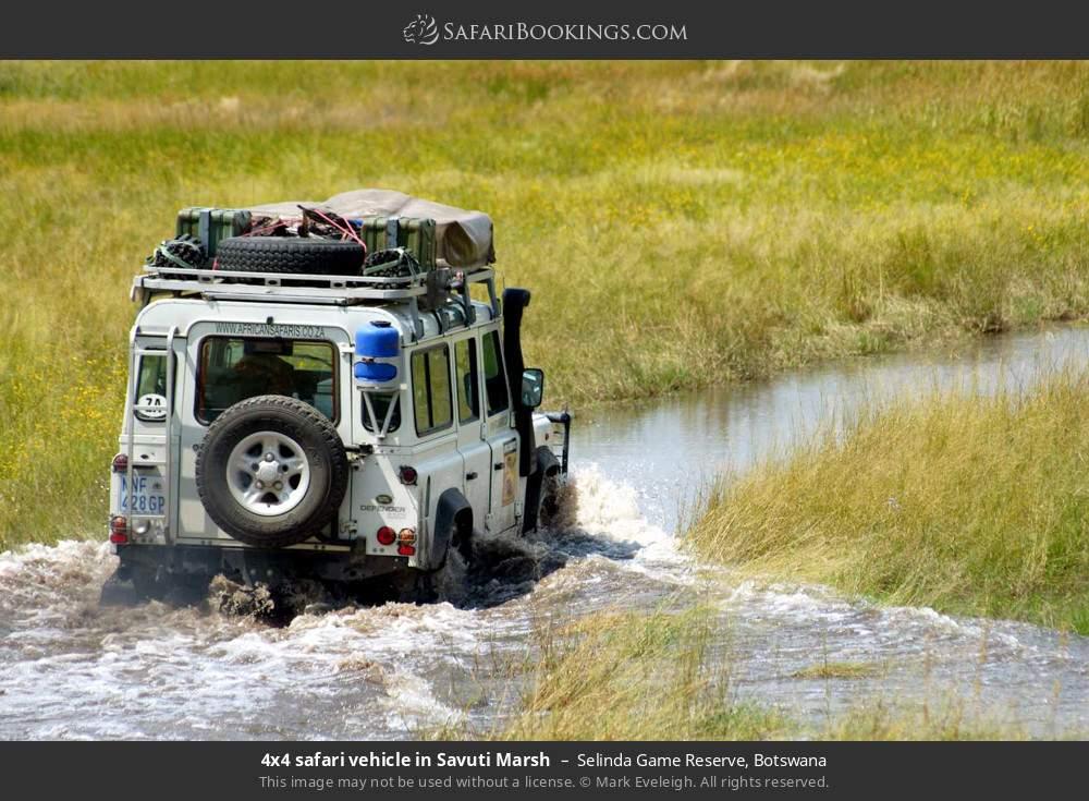 4x4 safari in Savuti Marsh in Selinda Game Reserve, Botswana