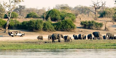 10-Day Authentic Wild Camping in Botswana +Victoria Falls